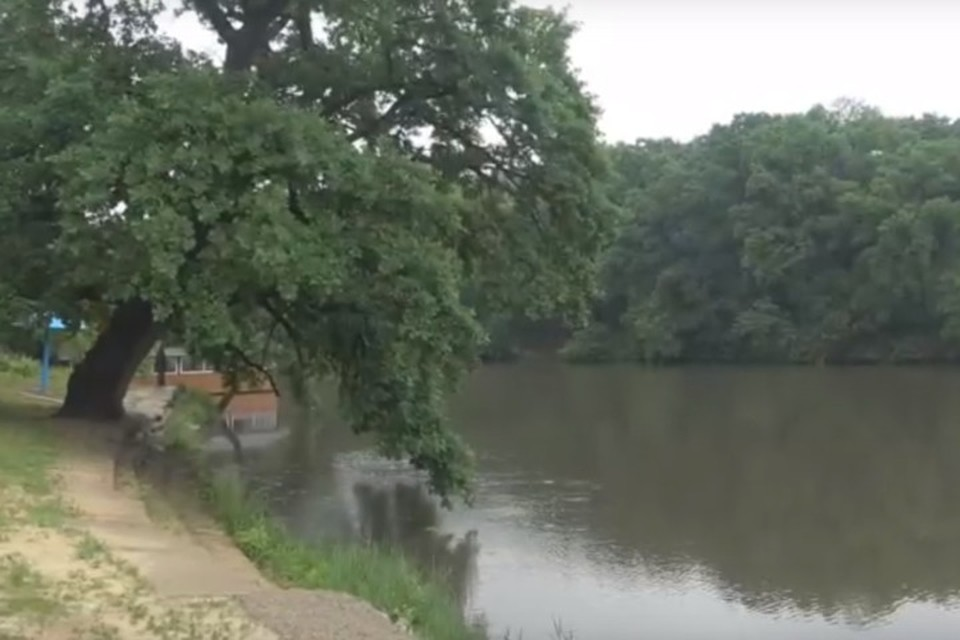 Опасно прятаться вблизи водоема под одиноко стоящим деревом, нельзя прислоняться к стволу. Фото: МЧС ЛНР