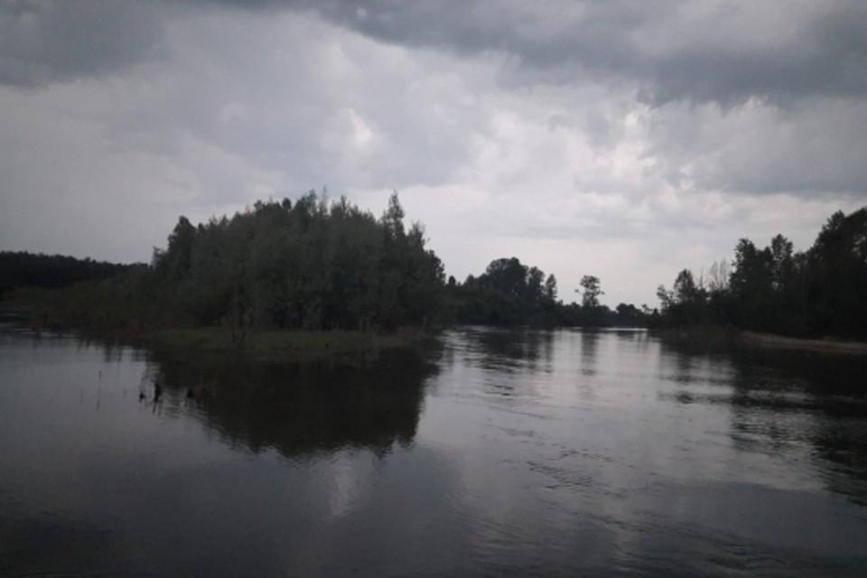 Та самая река Фото: Следком