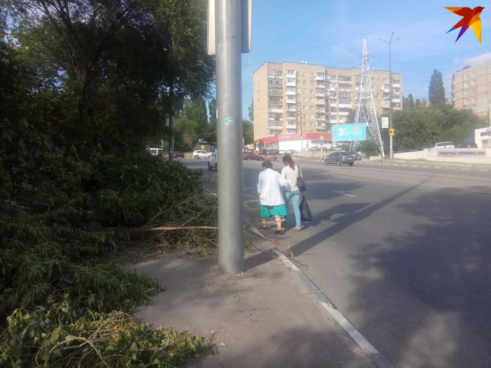 Саратовцы ходят по проезжей части, а тротуар завален ветками