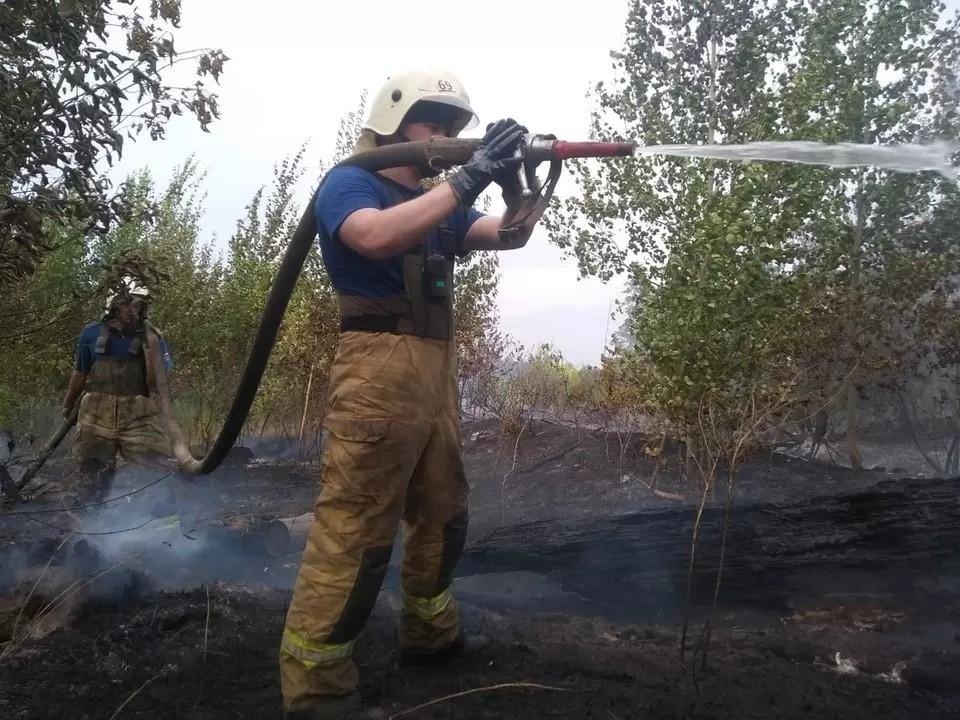 В Тольятти продолжают тушить лесной пожар. Фото: ГУ МЧС по Самарской области