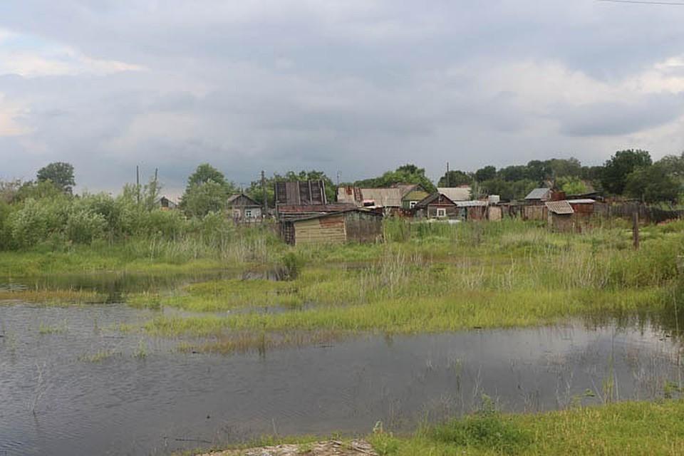 Гребень паводка прошел краевую столицу с максимальным уровнем Амура в 469 сантиметров