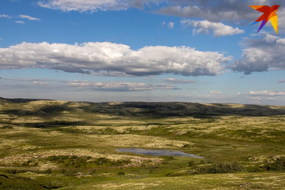 """Первые полгода """"Гектар Арктики"""" будут давать только жителям Мурманской области, потом - всем остальным."""