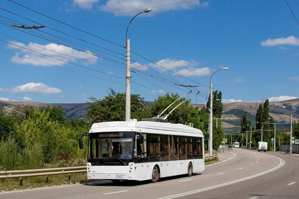 В междугородних троллейбусах установят аудиогид