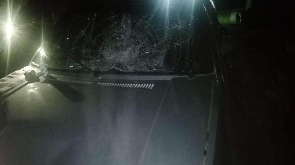 Водителя вскоре задержали (Фото: полиция).