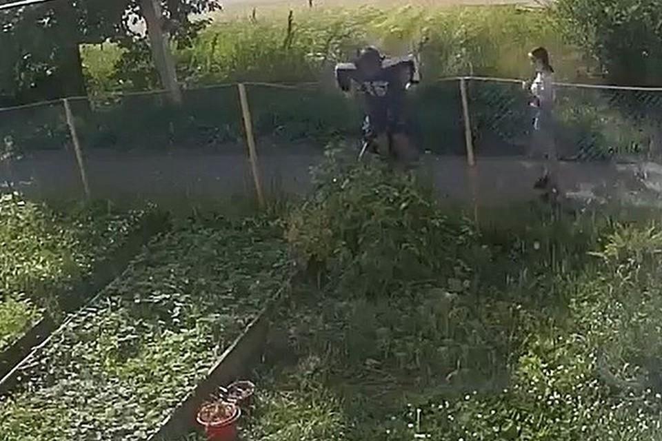 Выяснить, кто забрался на участок, помогла камера.