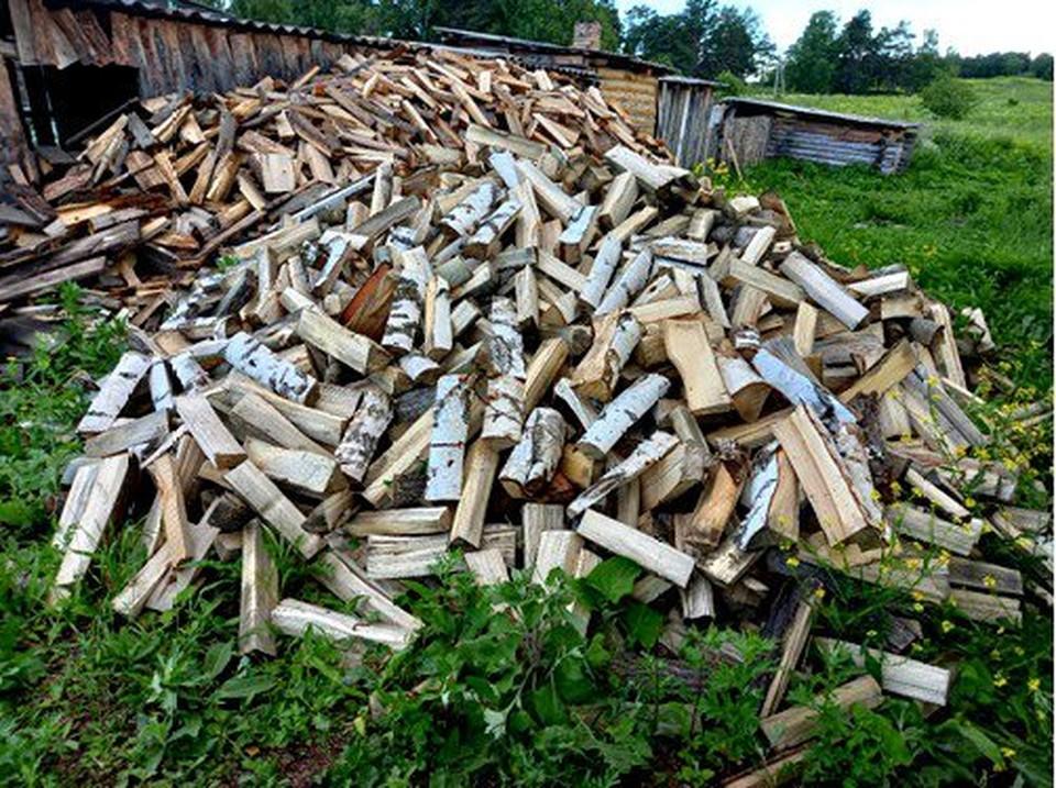 Некоторые сельские жители не привыкли платить за дрова, находят их в лесу и рубят сами. Фото: сайт УМВД по Томской области