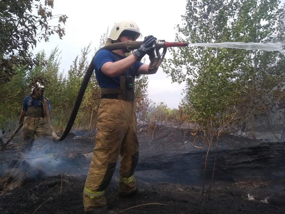 Пожар в лесу в Тольятти тушили с субботы. Фото - ГУ МЧС России по Самарской области