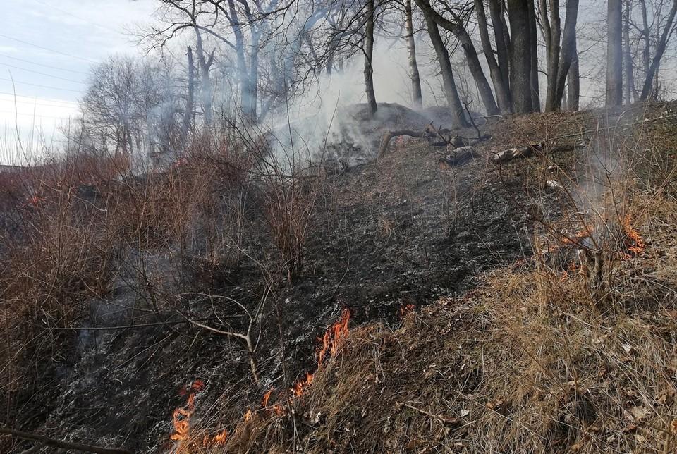 4 гектара сухой травы горело в Орловской области