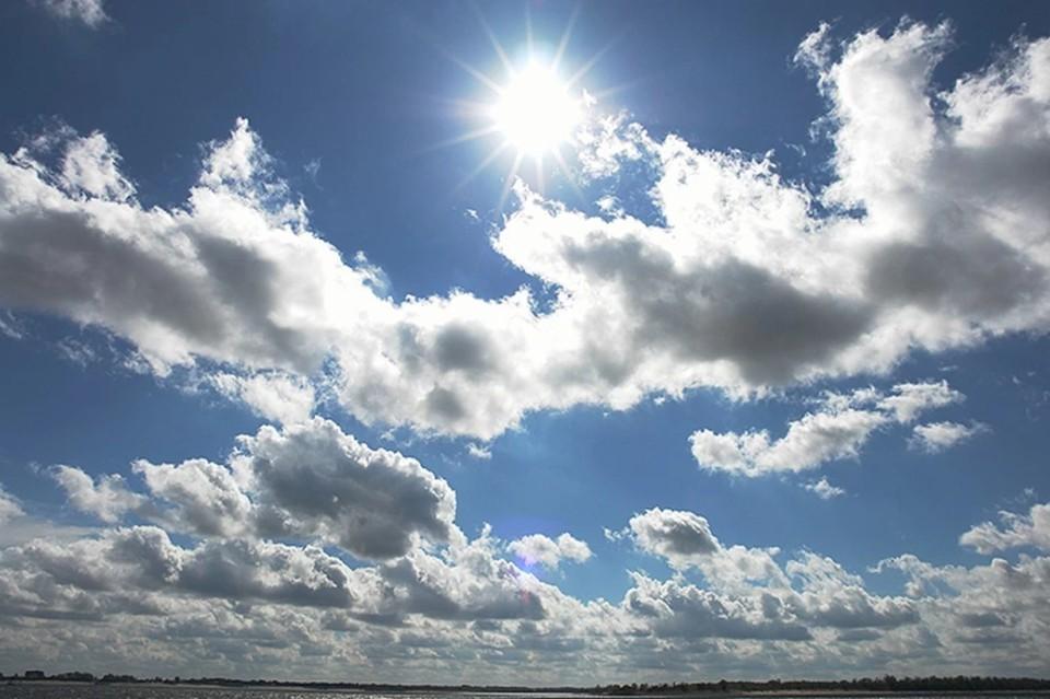 Погода в Волгоградской области на 16 июля: будет жарко.