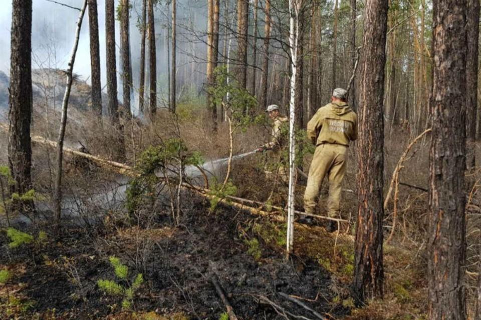 7 населенных пунктов попали в зону задымления от лесных пожаров в Иркутской области