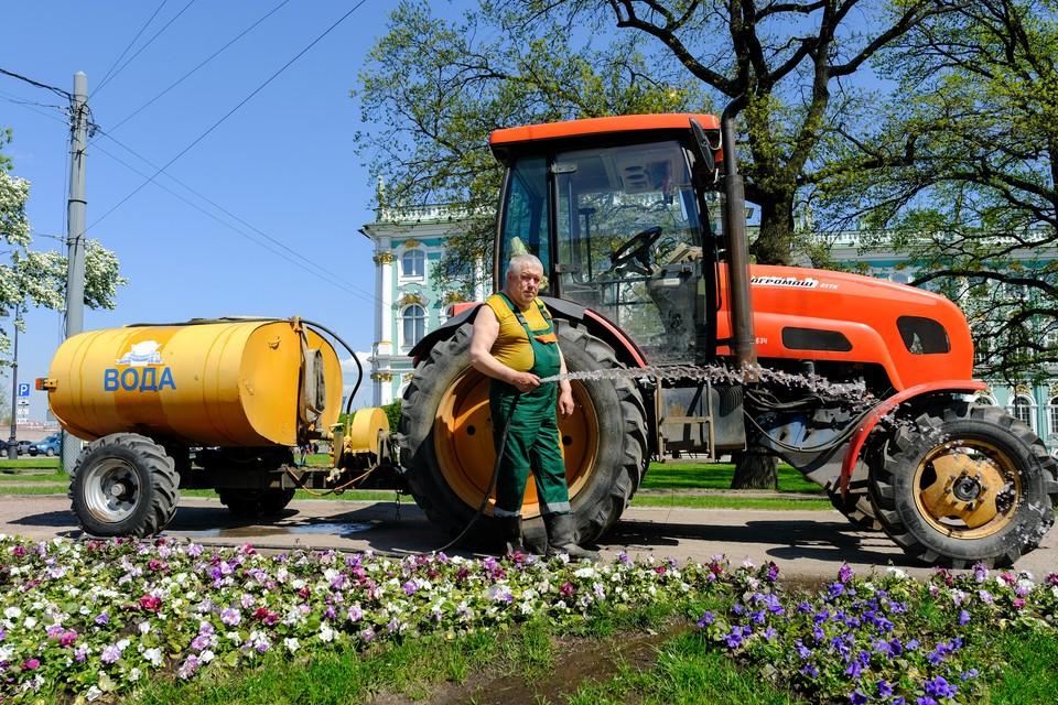 В Петербурге в аномально жаркую погоду усилили полив территорий зеленых насаждений.