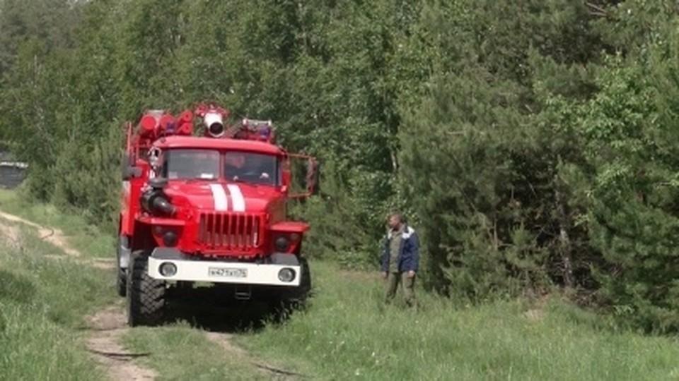 О ЧП сообщили родители. Фото: ГУ МЧС по Челябинской области