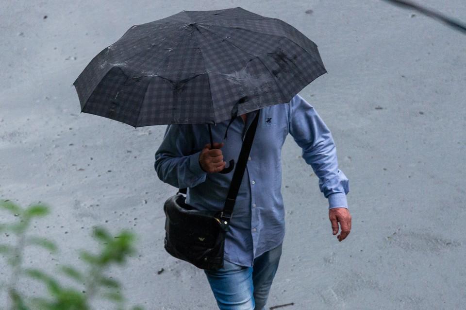 МЧС объявило штормовое предупреждение из-за гроз в Ленобласти 19 июля