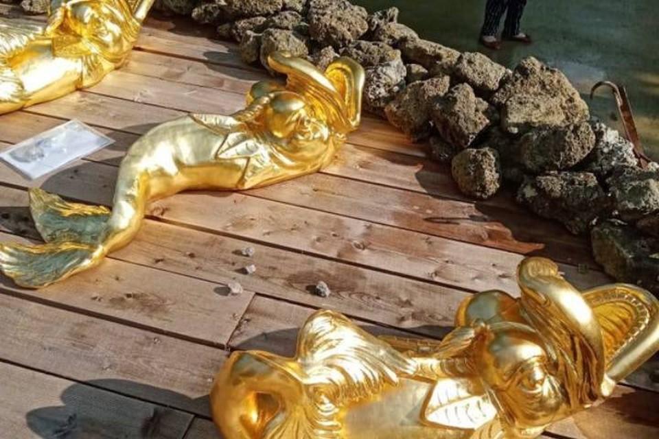 В Петергофе вандалы испортили фигуры дельфинов / Фото: Петергоф