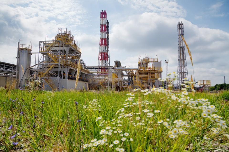 В 2020 году «Башнефть» вложила в проекты по охране окружающей среды 5,6 млрд рублей, а нагрузку на атмосферный воздух удалось снизить на 8%. Фото: Артур Салимов