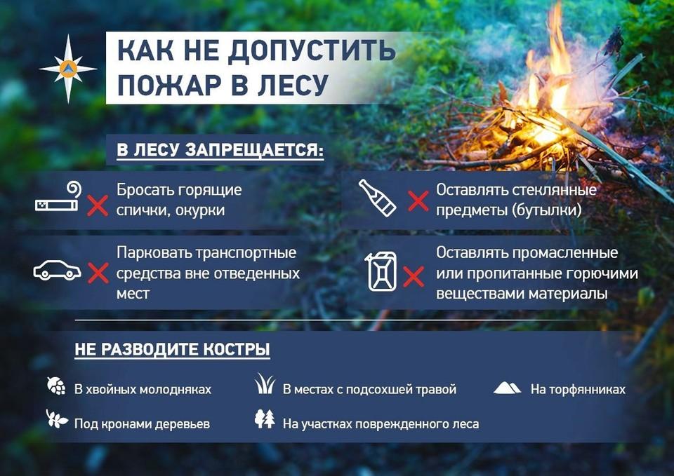 В случае обнаружения лесного пожара звоните по телефону «101» или «112».