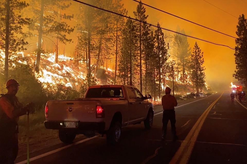 """Глобальный пожар в США получил свое имя """"Дикси"""""""