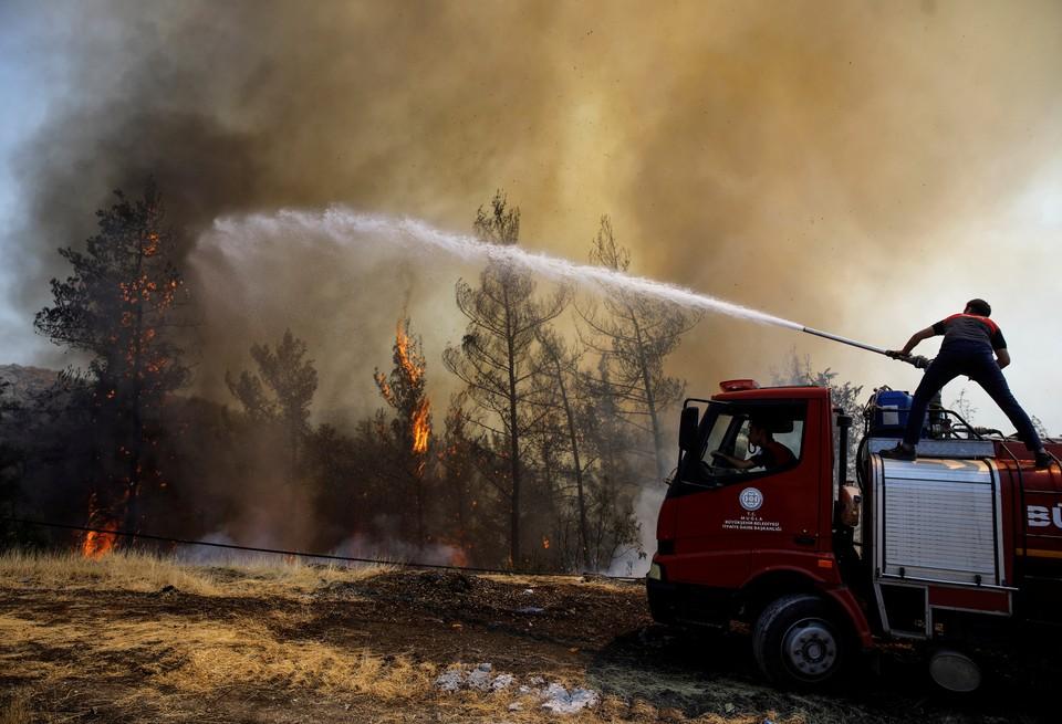 Турция продолжает борьбу с лесными пожарами