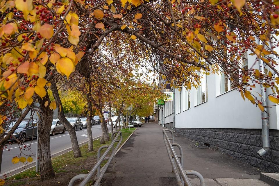 В Красноярске со 2 по 6 сентября обещают заморозки до -3 градусов