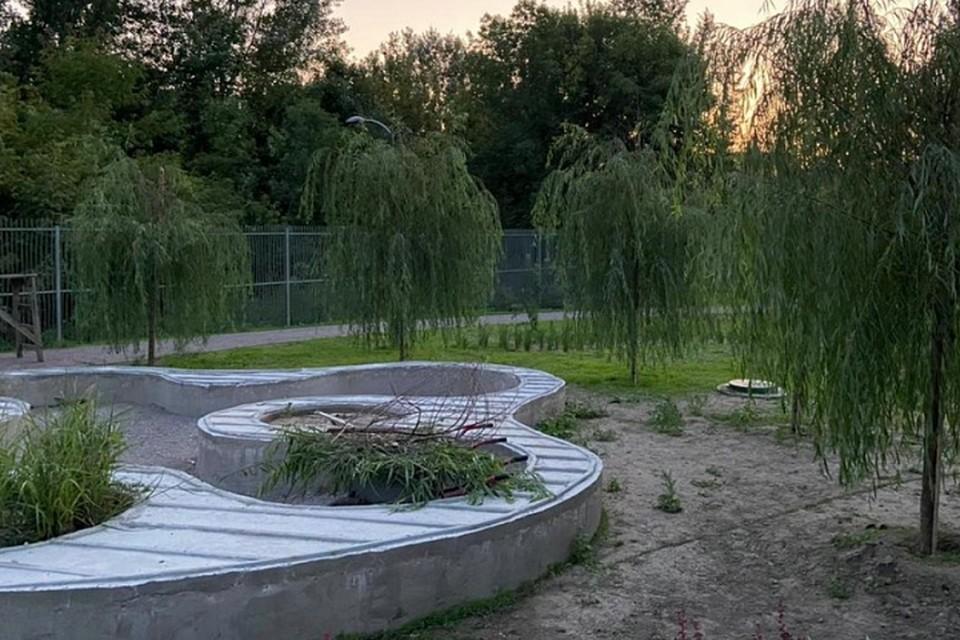 На территории парка высадили более 5 тысяч растений. Фото: страница в Instagram Алексея Логвиненко