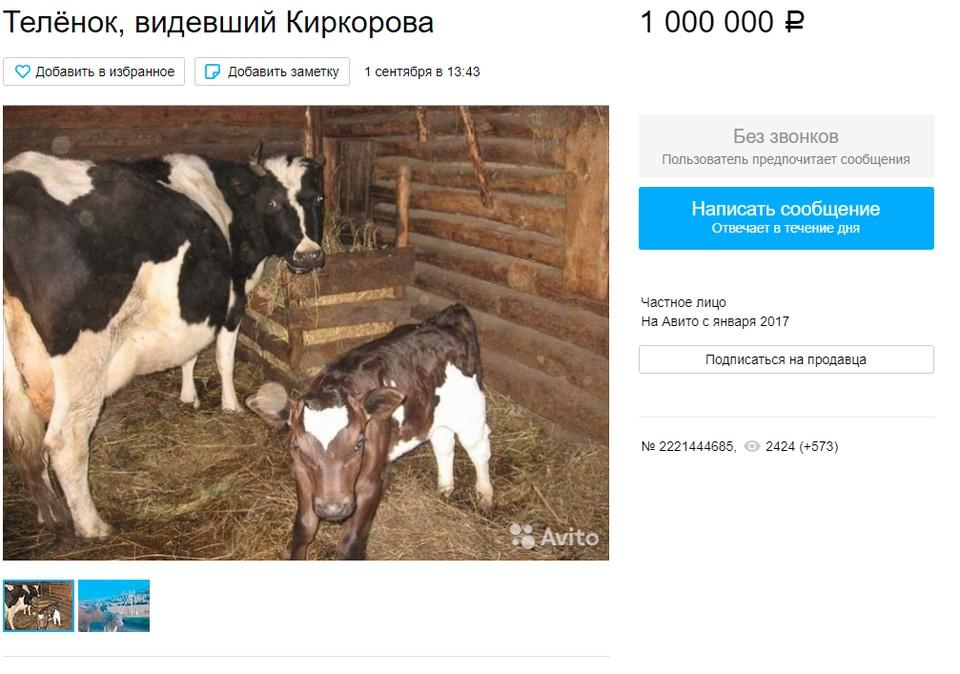 """Животное можно купить за один млн рублей или обменять на недвижимость. Скриншот страницы на """"Авито"""""""