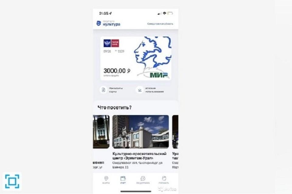 Такие объявления появились на сайте Авито.ру. Фото: скрин объявления