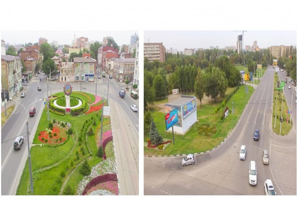 В Ростове выделили деньги на озеленение. Фото: администрация Ростова