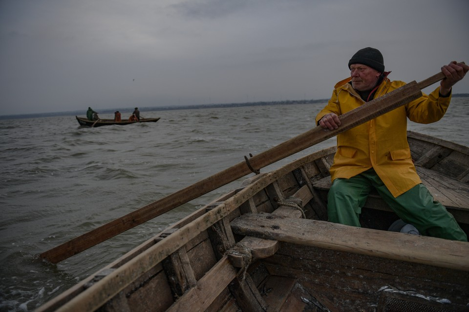 Соленость Азовского моря сказалась на качестве воды в Таганрогском заливе