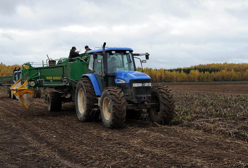 В Тверской области продолжается уборка урожая