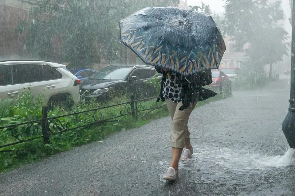 В Ленобласти обещают сильные дожди в четверг, 9 сентября.