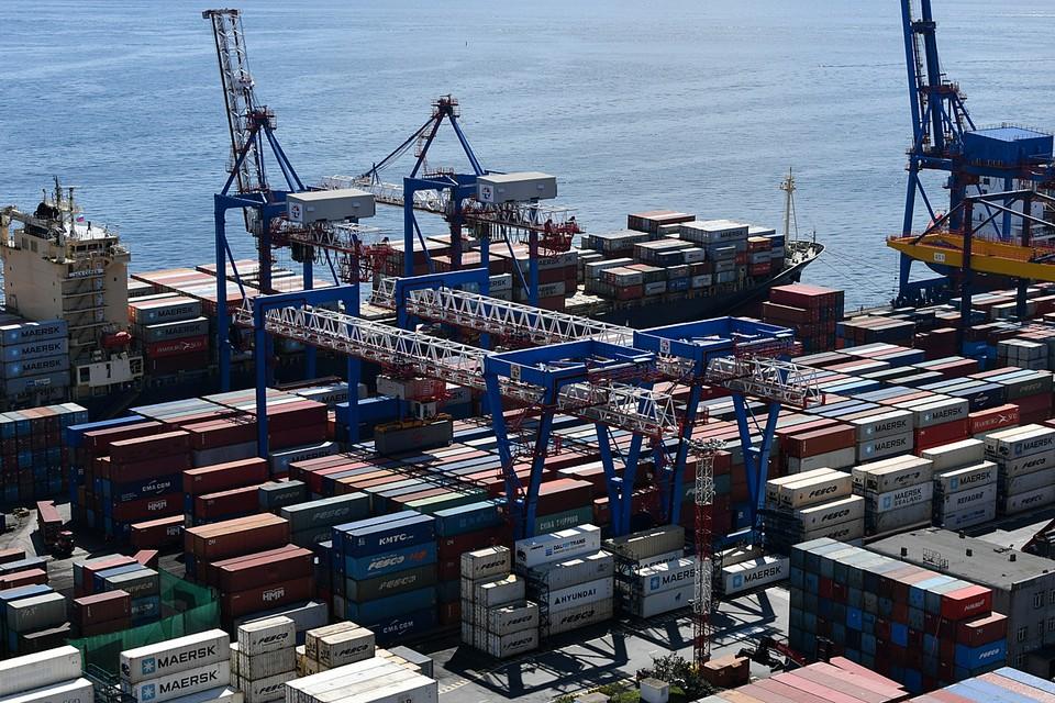 Восточный порт стал образцом российско-японского делового сотрудничества, когда был сделан прекрасный проект, который приносит пользу обеим странам. Фото: Юрий Смитюк/ТАСС