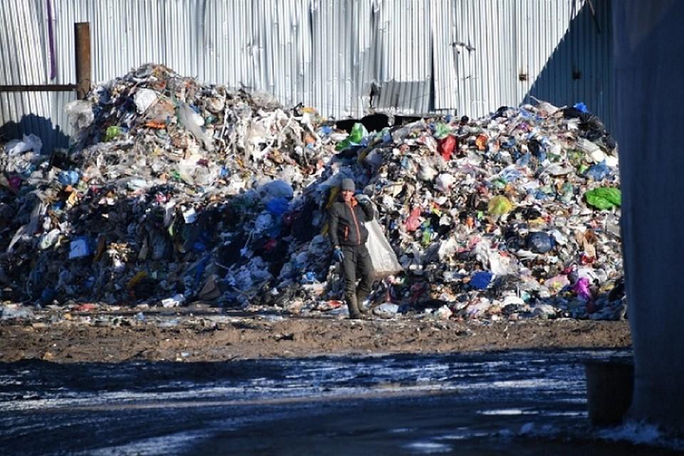 Завод будет сжигать мусор, чтобы получить электроэнергию.