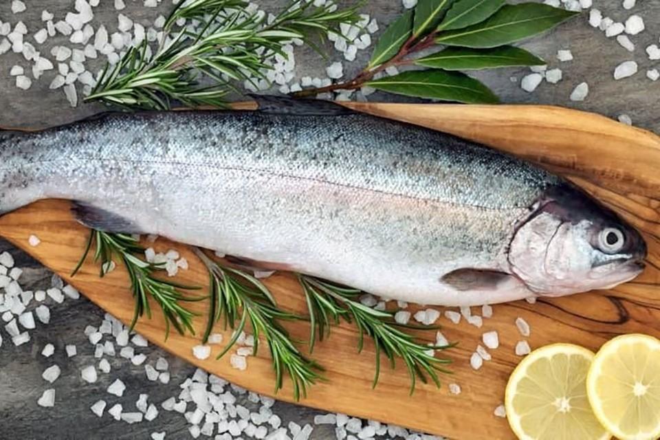 Россельхозбанк оценил размер привлекательных для себя инвестиций в рыбохозяйственную отрасль в 300 млрд.рублей. Фото предоставлено АО «Россельхозбанк».