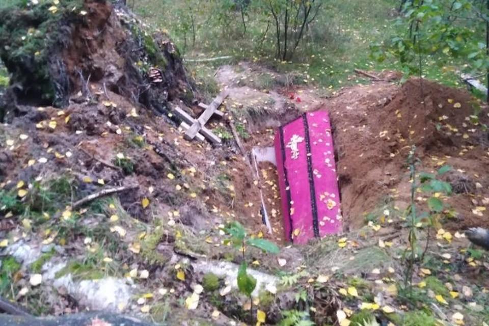 """Грибники нашли розовый гроб. Фото: группа ВКонтакте """"Подслушано в Ярославле"""""""