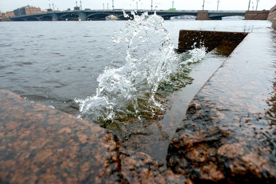 Уровень воды в Неве поднялся выше 130 сантиметров