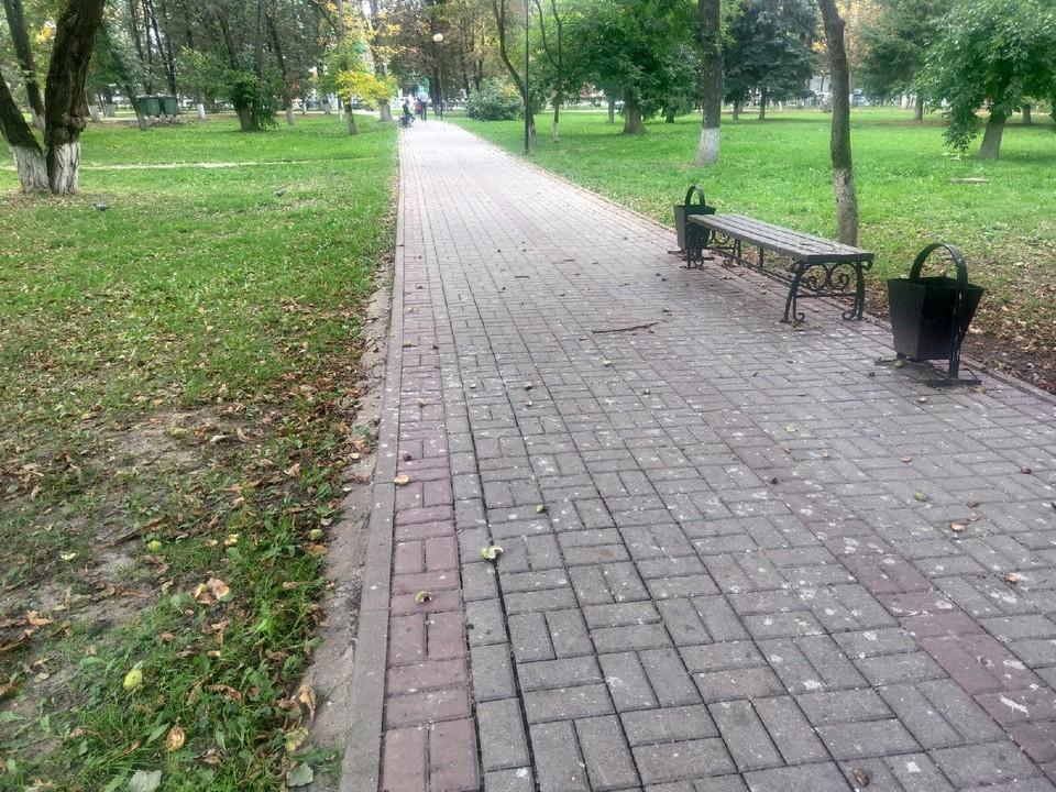 По скверу Мира в Калуге не пройти.