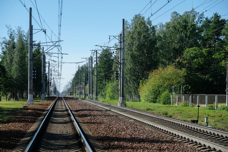 Электричка насмерть сбила пенсионерку под Петербургом