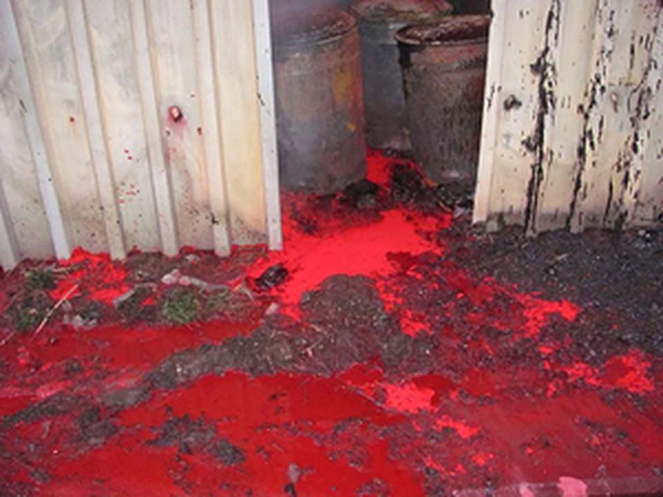 Отходы, которые вытекли из предприятия после пожара, оказались высокотоксичными.