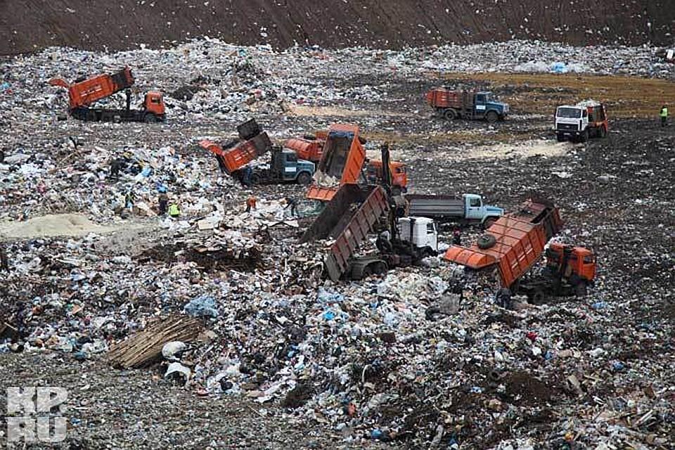 Воронеж погрязнет в отходах?