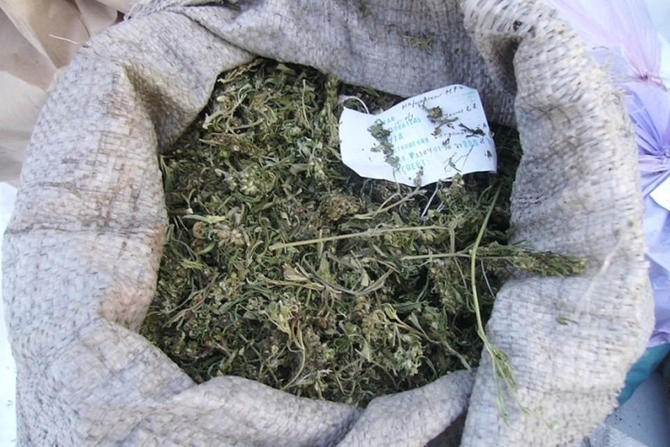 Забей мешочек конопли хранение марихуаны рб