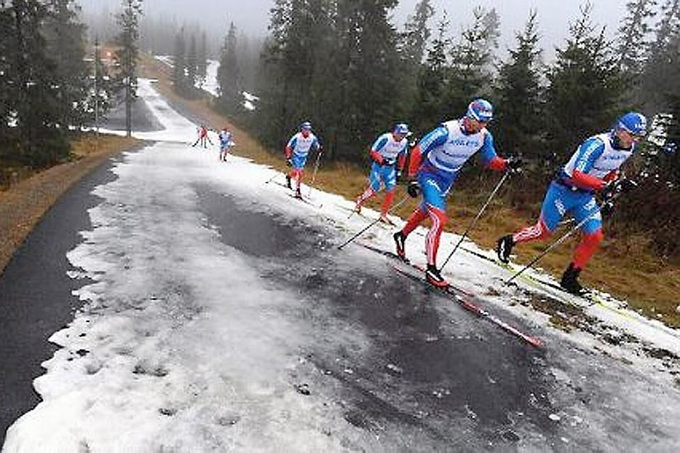 Лыжные гонки смешные картинки, тебя