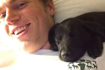 У сочинских собак, увезенных американскими спортсменами, появился аккаунт в Instagram