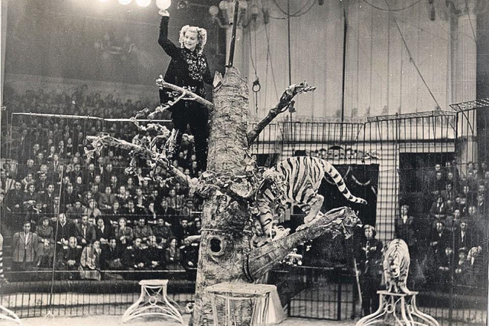 Маргарита Назарова - звезда «Полосатого рейса», самая известная укротительница тигров в СССР. Фото: Предоставлено Союзом цирковых деятелей России