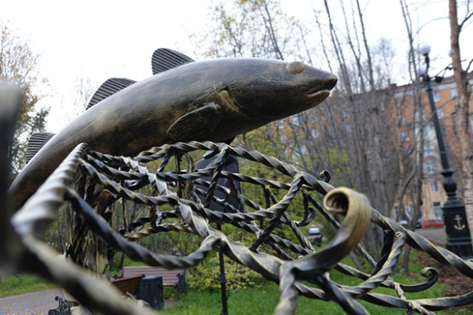 В Мурманске в сквере у ДК Кирова установили памятник треске ee8584fb60a