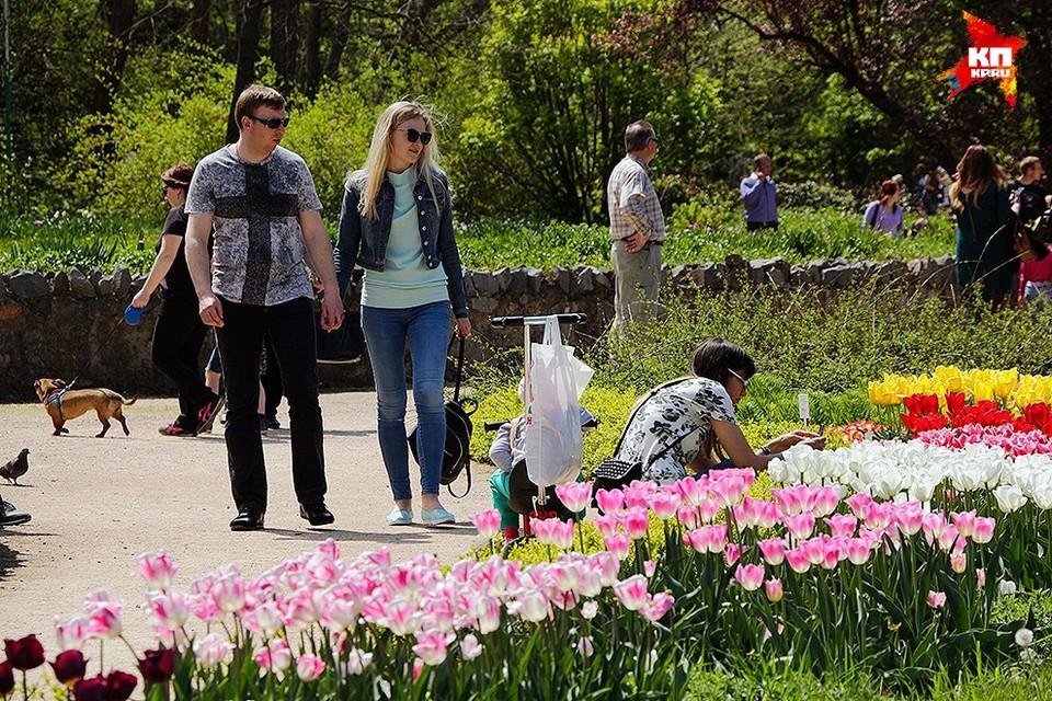 Посетители парка спешат запечатлеть мимолетную красоту