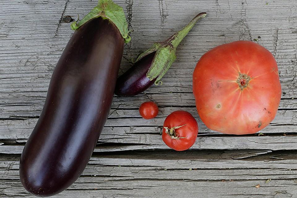 Как сообщили в пресс-службе ведомства, в овощах обнаружили опасного вредителя - западный (калифорнийский) цветочный трипс