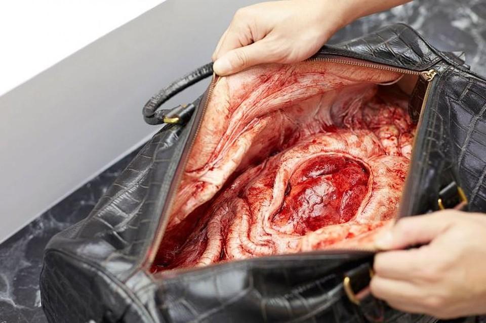 Напоминание о том, что стоит за модной сумочкой Фото: PETA Asia