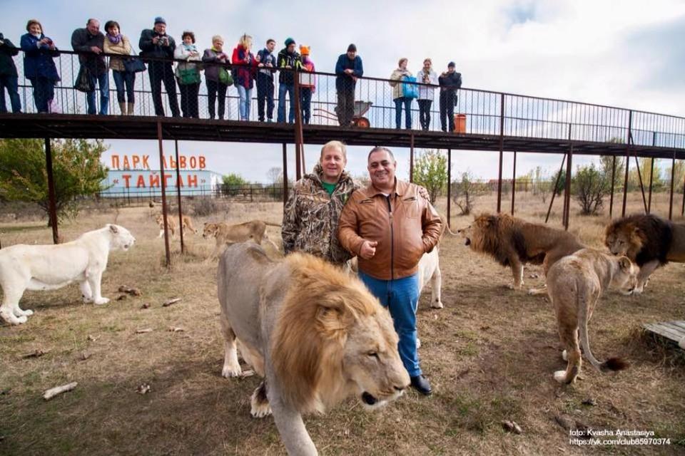 Олег Зубков и Карен Даллакян в окружении крымских львов. Фото: Анастасия КВАША.