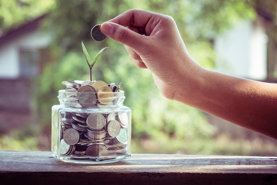 Самые высокие зарплаты в Пскове сегодня предлагают специалистам ИТ-сферы.