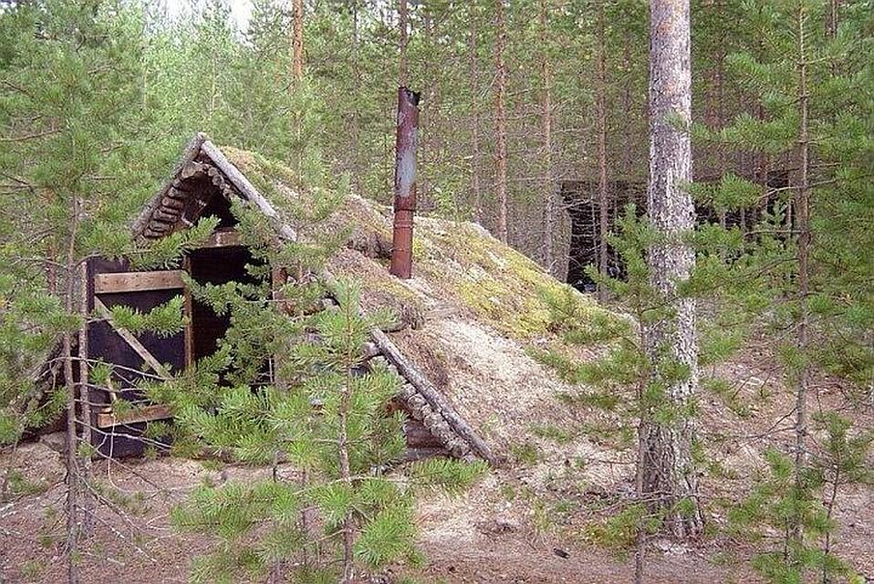 Видео брат и сестра отдыхают в лесу